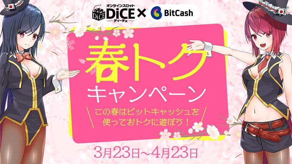 DiCE×ビットキャッシュ 春トクキャンペーン